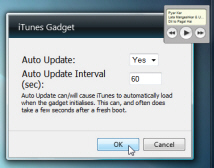 Configure options for the iTunes gadget
