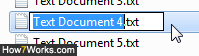 Type a new name for the selected file